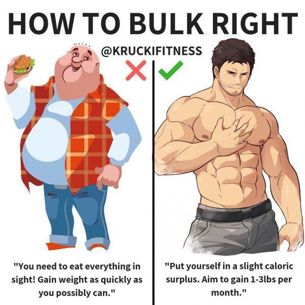 fase bulk