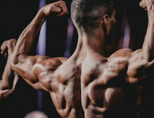 Il nuovo Bodybuilding